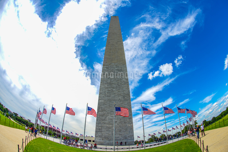 ワシントン記念塔のイメージの写真素材 [FYI03445585]