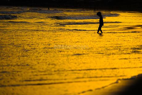 夕暮れの波打ち際で遊ぶ子供の写真素材 [FYI03445605]