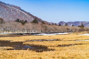 風景 冬景 雪山 山 湿地帯 空 晴天 自然の写真素材 [FYI03445856]