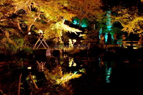 鎌倉の夜の写真素材 [FYI03445888]