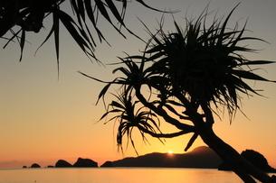 海辺の夕日の写真素材 [FYI03445901]