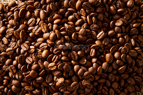 Close-up of coffee beansの写真素材 [FYI03446031]