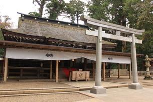 神社の写真素材(鹿島神宮)の写真素材 [FYI03446032]
