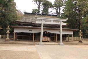 神社の写真素材(鹿島神宮)の写真素材 [FYI03446034]