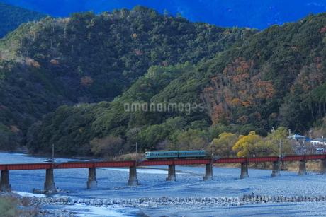 大井川鉄道ズームカーの写真素材 [FYI03446140]