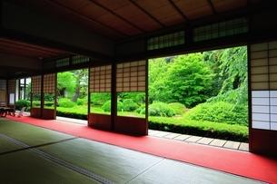 新緑の雲龍院の写真素材 [FYI03446417]