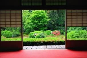 新緑の雲龍院の写真素材 [FYI03446418]