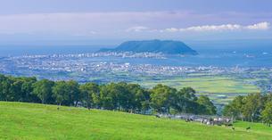 北海道 自然 風景 パノラマ 城岱牧場より函館市街遠望 の写真素材 [FYI03446460]