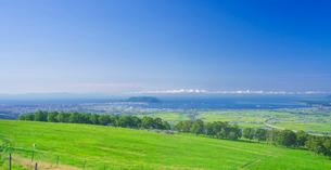 北海道 自然 風景 パノラマ 城岱牧場より函館市街遠望 の写真素材 [FYI03446489]
