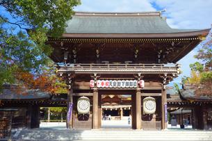 神奈川県 寒川神社の神門の写真素材 [FYI03446739]
