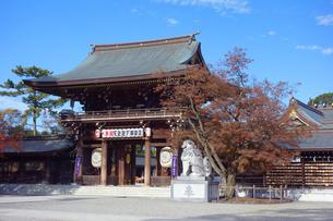 神奈川県 寒川神社の神門の写真素材 [FYI03446749]