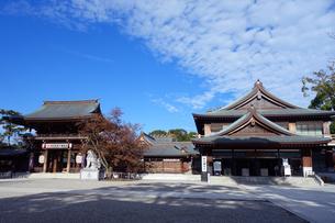 神奈川県 寒川神社の写真素材 [FYI03446750]
