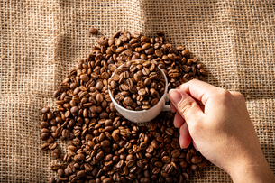 Coffee beansの写真素材 [FYI03446825]
