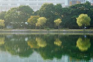 朝の大濠公園の写真素材 [FYI03447125]