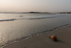朝の志賀島の浜辺の写真素材 [FYI03447129]