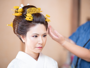 和髪をセットしている様子の写真素材 [FYI03447550]