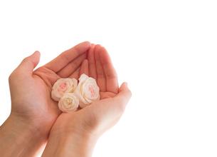 花を包む女性の手のひらの写真素材 [FYI03448082]
