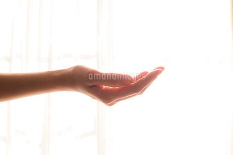 手入れされた女性の手09の写真素材 [FYI03448085]