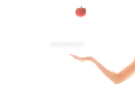 リンゴを持つ女性の手05の写真素材 [FYI03448098]