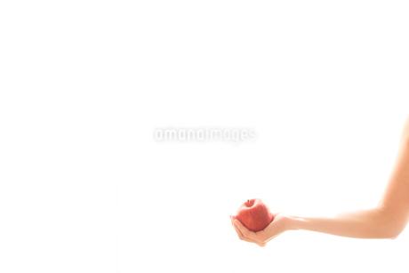 リンゴを持つ女性の手04の写真素材 [FYI03448099]