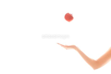 リンゴを持つ女性の手03の写真素材 [FYI03448100]