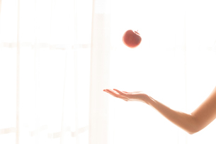 リンゴを持つ女性の手02の写真素材 [FYI03448101]