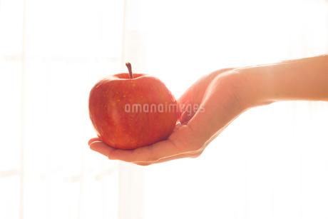 リンゴを持つ女性の手01の写真素材 [FYI03448102]