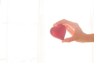 優しくハートを掴む女性の手02の写真素材 [FYI03448105]