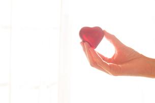 優しくハートを掴む女性の手01の写真素材 [FYI03448106]