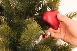 クリスマスが待ち遠しい子供の写真素材 [FYI03448125]