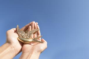 鳥のモチーフを持つ空に伸びる手の写真素材 [FYI03448143]