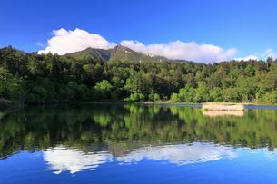 5月 利尻島の姫沼と利尻山(りしりざん)の写真素材 [FYI03448262]