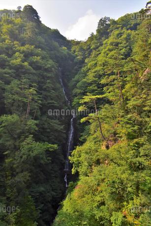 不動の滝 (群馬県吾妻郡長野原町)の写真素材 [FYI03448421]