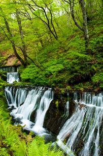軽井沢 白糸の滝の写真素材 [FYI03448458]