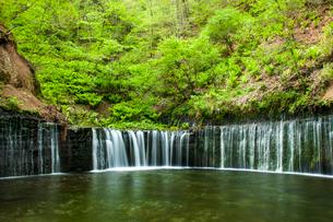 軽井沢 白糸の滝の写真素材 [FYI03448491]