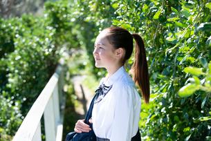 遠くを見ている制服姿の女子学生の写真素材 [FYI03448882]