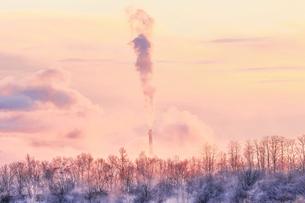 冬の風景の写真素材 [FYI03448884]