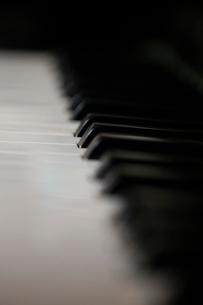 ピアノの鍵盤の写真素材 [FYI03449062]