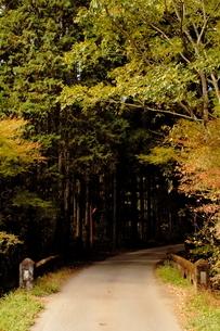 山道への入り口の写真素材 [FYI03449219]