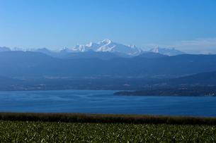 スイス、レマン湖とモンブランの写真素材 [FYI03449231]