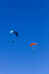 フランス、サレブ山上でのパラグライダーの写真素材 [FYI03449265]