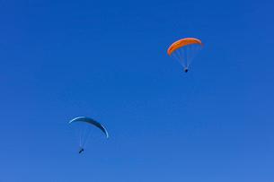 フランス、サレブ山上でのパラグライダーの写真素材 [FYI03449268]