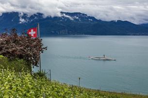 スイス、ラヴォー地区の風景の写真素材 [FYI03449280]