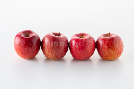 Red apples on white backgroundの写真素材 [FYI03449417]