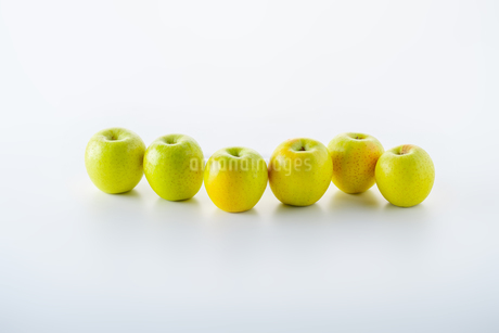 Green apples on white backgroundの写真素材 [FYI03449421]