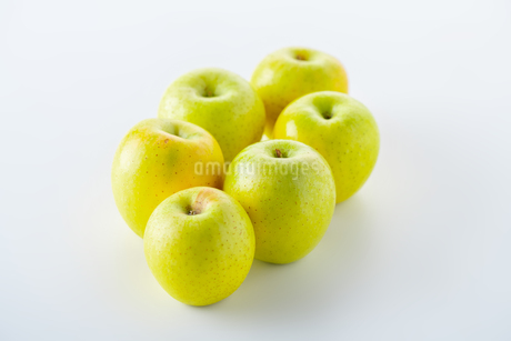 Green apples on white backgroundの写真素材 [FYI03449423]