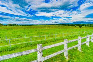 牧場の草原の写真素材 [FYI03449590]