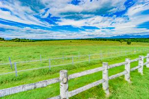 牧場の草原の写真素材 [FYI03449593]