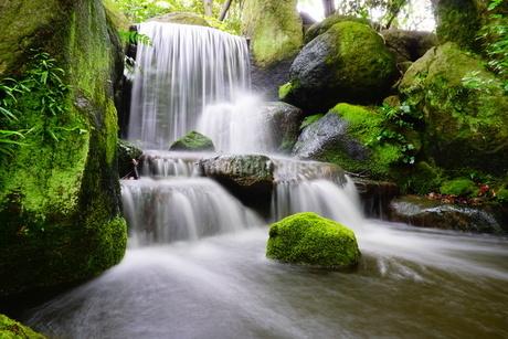 日本庭園の滝の写真素材 [FYI03449608]