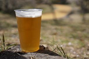 プラスチック容器に入ったビールの写真素材 [FYI03449611]